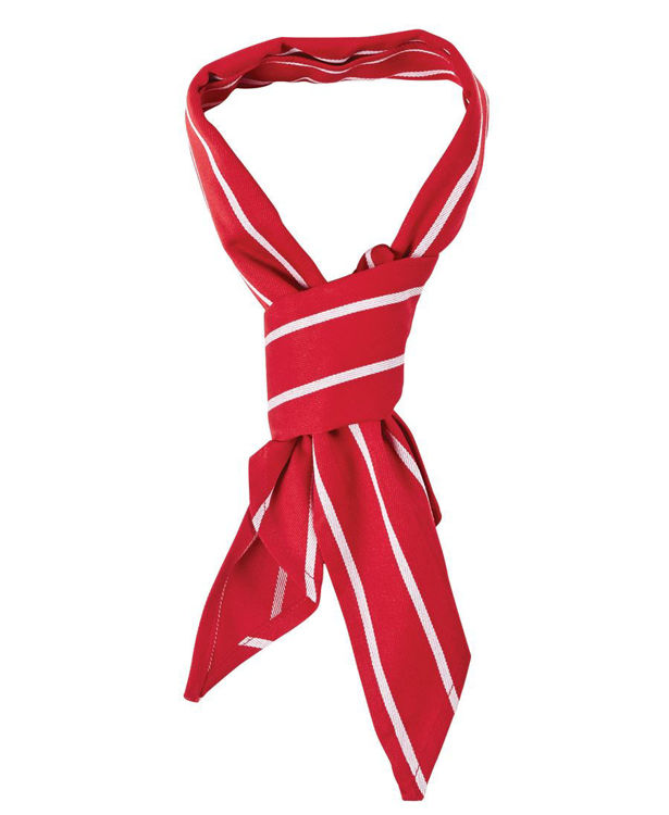 Picture of JB'S CHEFS SCARF